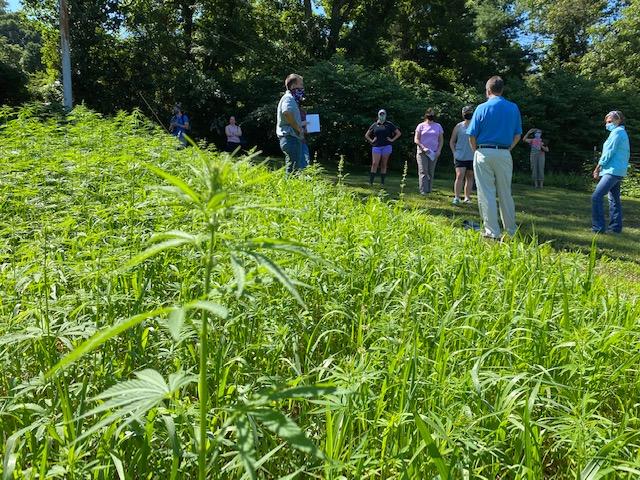 Group gathered in PA hemp fiber field