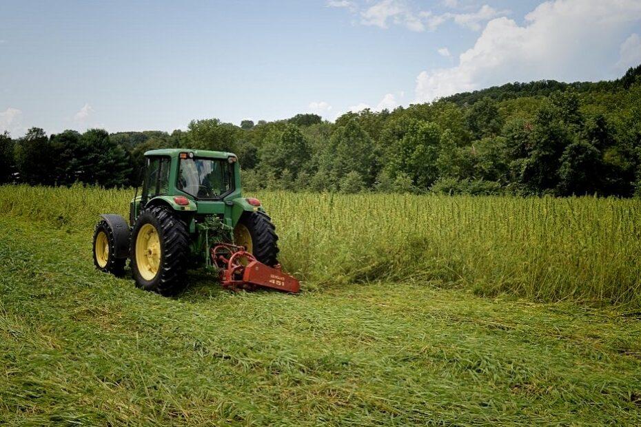 A piece of farming equipment in a hemp field